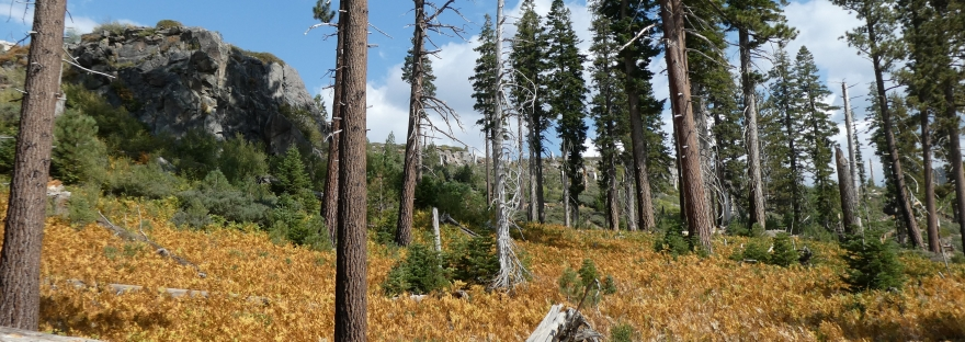 Reds Meadow Valley, Inyo National Park